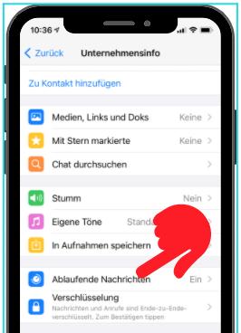 WhatsApp Ablaufende Nachrichten 2