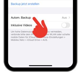 iPhone WhatsApp Backup 3